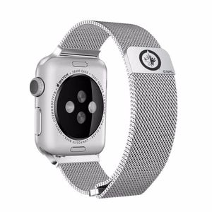 Winnipeg Jets Stainless Apple Compatible Watchband
